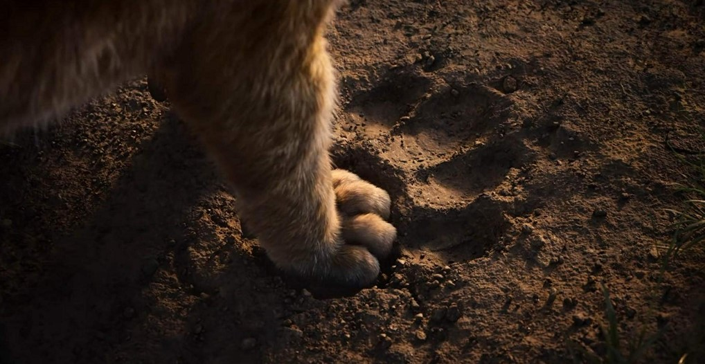 The Lion King 2019 Cast Release Date Plot Budget Box Office