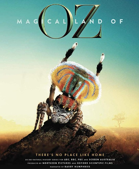 Magical Land of Oz TV Series (2019) Poster