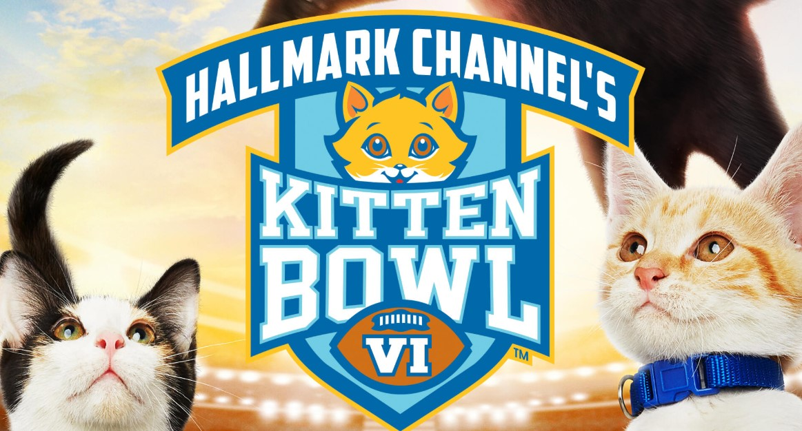 Kitten Bowl VII (2020) | Cast | And Everything You Need to Know