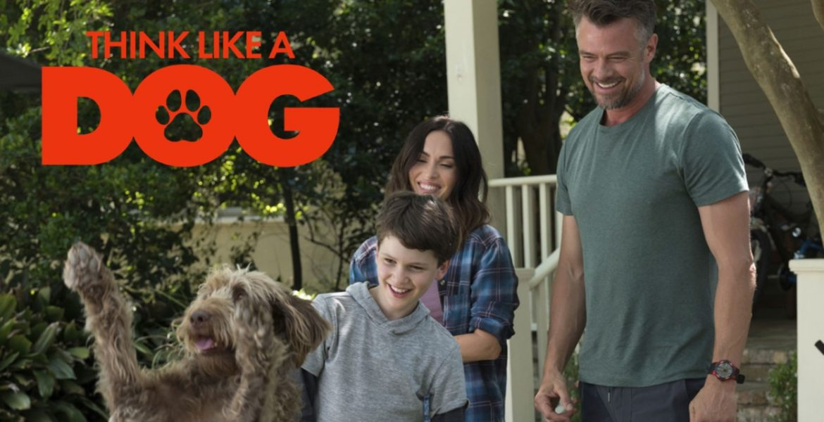 Think Like a Dog (2020) Cast, Plot, Release Date, Trailer