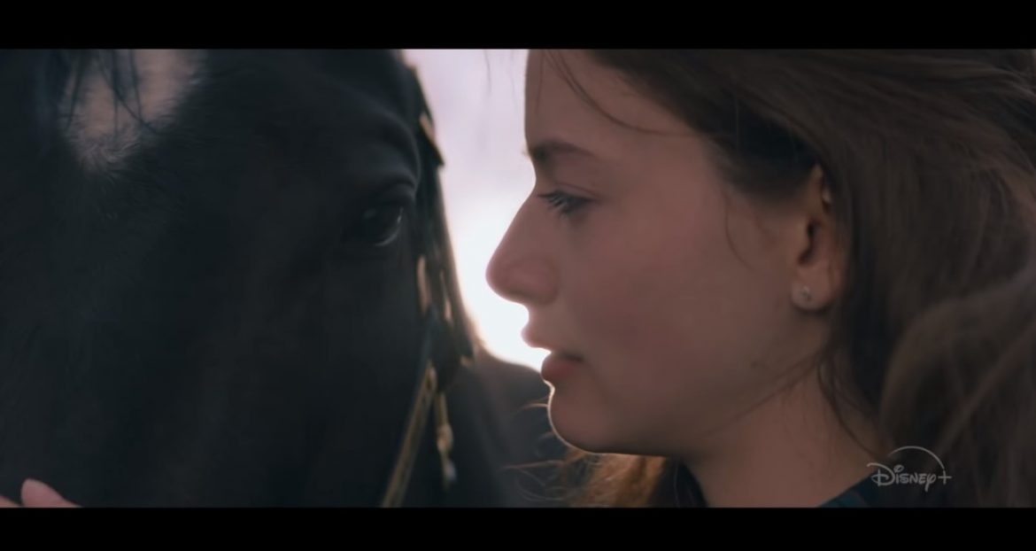 Black Beauty (2020) Cast, Release Date, Plot, Budget, Box office, Trailer